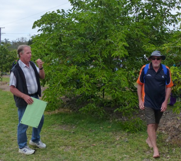 members at the Gin Gin School plot May 2015. Many trees now fruiting.